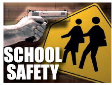 'Professional' speaks out on gun at school incident