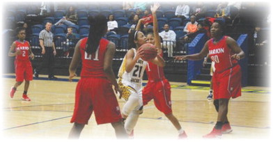 Lady Greyhounds sign former Wynne Yellowjacket