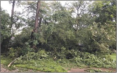 Summer storms wreak havoc… again