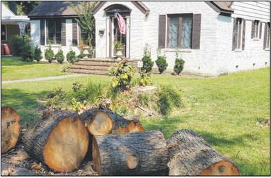 Councilmen stump for enforcement of limb laws