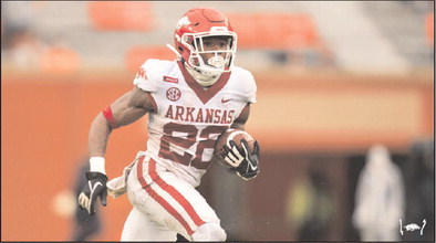 Hogs fall to Tigers after controversial call